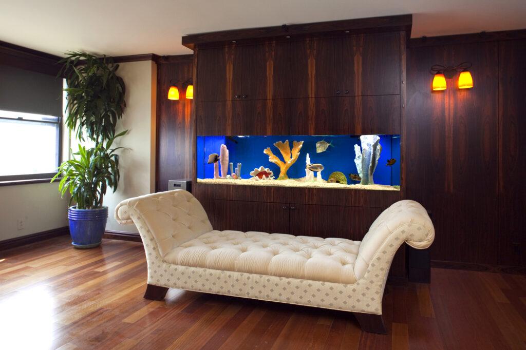 Frameless Aquarium Design in Brazilian Rosewood