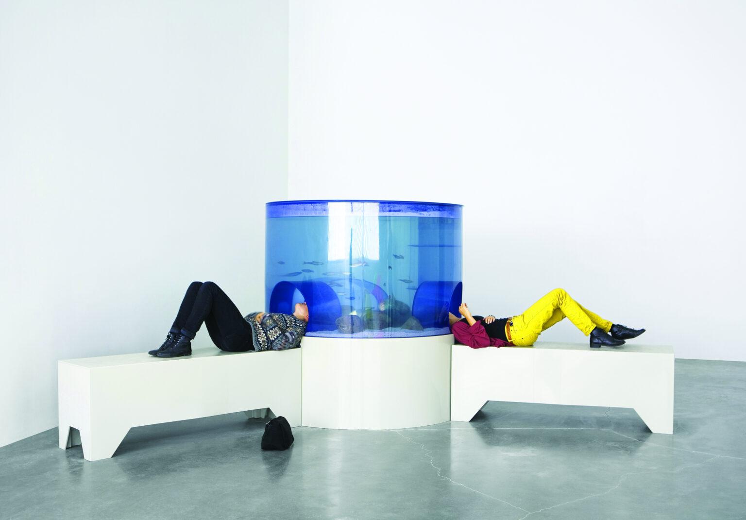 New museum aquarium installation
