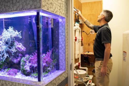 aquarium maintenance room